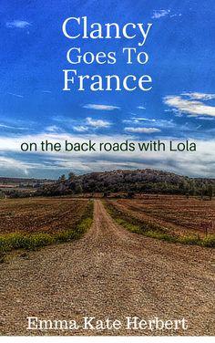 http://www.livinglavidalola.com/on-the-road/france/driving-in-france/