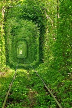 TunnelOfLoveUkraine