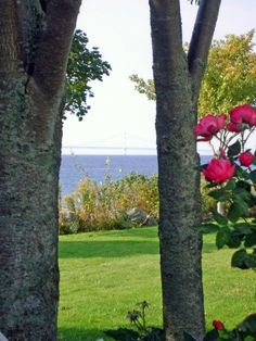 From Mackinac Island Looking at the Bridge