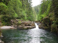 1. Brice Creek