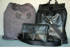 Pegasus | Indiegogo