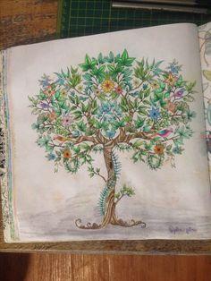 Tajemny ogród Kredki mondeluza 😁