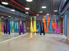 Want to try aerial yoga? You can when you live at AMLI Dadeland, apartment rentals in Miami!