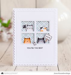 Mama Elephant Stamp Highlight: The Cat's Meow @akossakovskaya @mamaelephant #cardmaking #mamaelephant