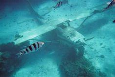 Tahiti, French Polynesia: Sunken Cessna #travel #photo