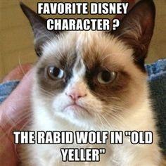 Favorite Disney character. #GrumpyCat, #meme #humor #quotes #Tard #TardarSauce #lol #funny #Disney