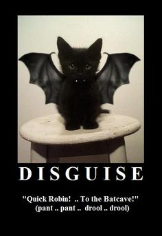 Disguise