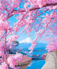 Mount Fuji, Japan Photo by Photo Japon, Japan Photo, Beautiful Nature Wallpaper, Beautiful Landscapes, Beautiful World, Beautiful Places, Landscape Photography, Nature Photography, Landscape Art