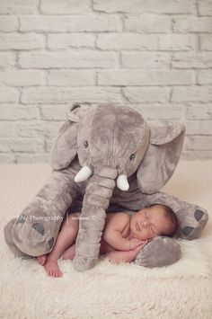 Keepsakes & Baby Announcements Personalized Birth Announcement Grey Elephant Stuffed Animal Plush Baptism Aromatic Character And Agreeable Taste