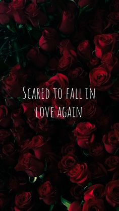 52 Ideas for wallpaper iphone quotes songs russ Deep Wallpaper, Broken Heart Wallpaper, Mood Wallpaper, Cute Wallpaper Backgrounds, Cute Wallpapers, Trendy Wallpaper, Wallpaper Iphone Quotes Songs, Funny Phone Wallpaper, Mood Quotes