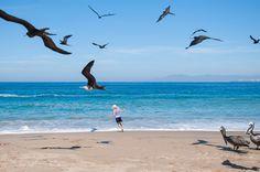 Las #playas de México regalan cientos de paisajes mágicos para disfrutarlos de la manera que más lo desees. Si buscas desconectarte de la rutina, lo mejor es contratar un buen paquete de viajes y entregarte al placer del mejor #turismo. http://www.bestday.com.mx/Paquetes/Volaris/