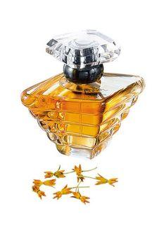Tresor van Lancôme heeft basisnoten van amber en muskus. Middennoten van perzik en abrikoos. Topnoten van witte roos, sering en lelietje-van-dalen. Een frisse en fruitige geur.
