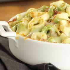 Baked Tortellini Recipe Main Dishes with tortellini, Alfredo sauce, prosciutto, mozzarella cheese