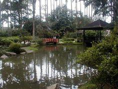 Japanese Garden Rio de Janeiro Botanical Gardens