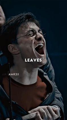 Harry Potter Feels, Draco Harry Potter, Harry James Potter, Harry Potter Aesthetic, Harry Potter Characters, Ron And Harry, Harry Draco, Daniel Radcliffe Harry Potter, Harry Potter Collection