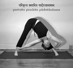 parivritta urdhva yogadandasana: revolved upward yoga staff pose parsvottanasana · paschimottanasana: seated forward bend pashasana: noose posture