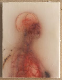 bcb: Portraits by Bryan Christie, a medical illustrator