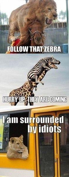 hahahahahahahahahahahaha.