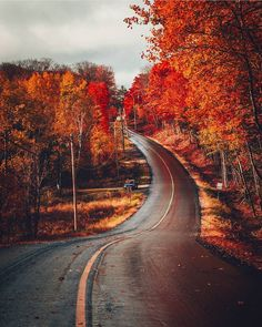 Would love to take a ride down this road in the fall