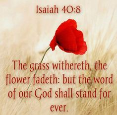 Isaiah 40:8 The Word