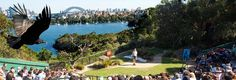 Taronga Zoo is a ferry ride from Sydney & also has a zipline!