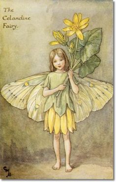 "Vintage print 'The Celandine Fairy' by Cicely Mary Barker from ""The Book of the Flower Fairies""; Poem and Pictures by Cicely Mary Barker, Published by Blackie & Son Limited, London [Flower Fairies - Spring] Cicely Mary Barker, Flower Fairies, Grandes Photos, Arte Fashion, Spring Fairy, Vintage Fairies, Vintage Art, Vintage Prints, Fairy Pictures"