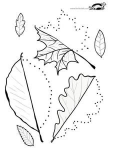 Line worksheets. Library Activities, Kids Learning Activities, Autumn Activities, Autumn Crafts, Autumn Art, Fall Preschool, Preschool Crafts, Toddler Crafts, Crafts For Kids