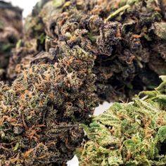 Buy CBD Hemp Flower – Hemp flower for sale Insomnia Medication, Mental Health Disorders, Buy Weed Online, Plant Species, Small Farm, Hemp Oil, Buy Ac, Seeds, Depression