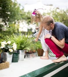 Grzegorz and his family created a roof-top garden on the canal boat | live from IKEA FAMILY