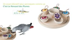 Le Teatime Parrot Tea Time, Parrot, Place Cards, Parenting, Place Card Holders, Budgies, Parrots, Educational Toys, Parrot Bird