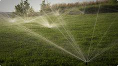 Tipos de riego que realizamos,  Por Aspersión Por Goteo Jardines Verticales