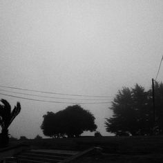 """Fog in the city""... (Om Malik)"