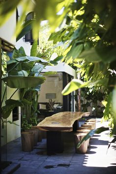 atmosphere. tropical outdoor dining. wood. banana leafs. stool seating for twelve (12).