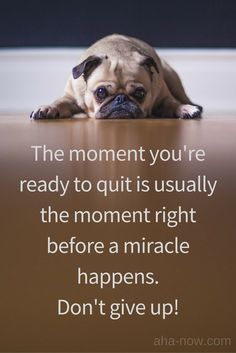 ~ The moment you're ready to quit is usually the moment right before a miracle happens. Don't give up! ~