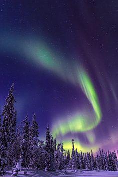 Northern Lights Wallpaper, Lit Wallpaper, Scenery Wallpaper, Tumblr Wallpaper, Galaxy Wallpaper, Nature Wallpaper, Cool Backgrounds, Wallpaper Backgrounds, Aurora Sky
