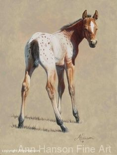 """Baby Blanket"" ~ Ann Hanson Oil ~ x Majestic Horse, Beautiful Horses, Horse Drawings, Animal Drawings, Art And Illustration, Animal Paintings, Horse Paintings, Pastel Paintings, Horse Artwork"
