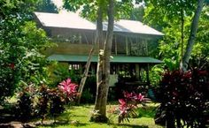 Handcrafted bamboo beach house - on the beach, in the rainforest (secret place)