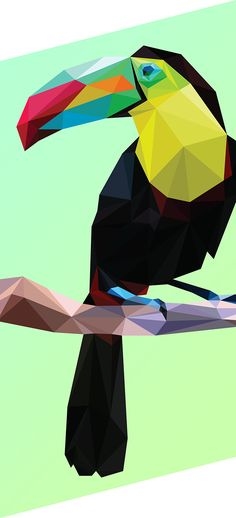 Polygonal studies, low poly pieces that I've made for multiple purposes.In this serie I've tried to apply the low poly style at many different kind of motives, from the less complex as this first bird to the very complexity as portraits. Low Poly, Triangle Art, Polygon Art, Fractal, Geometric Art, Geometric Animal, Geometric Designs, Bird Illustration, Grafik Design