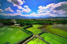 Nantou #Taiwan 南投 埔里