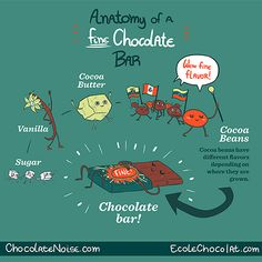 bean2bonbon post - Anatomy of a Fine Chocolate Bar! Part 3 in a series of educational infographics we created with Megan Giller of Chocolate Noise!