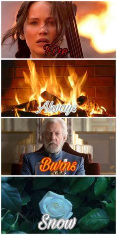 I would burn you, Snow, but I'm not allowed to burn TRASH Hunger Games Jokes, Hunger Games Costume, Divergent Hunger Games, Hunger Games Cast, Hunger Games Fandom, Hunger Games Trilogy, Katniss And Peeta, Katniss Everdeen, Book Memes
