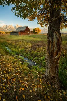 Pioneers - Mormon Row near Jackson Hole, Wyoming has some of the most photographed barns in the world â and it's easy to see why. The rustic wooden façades hint at the hardy weather conditions these valleys experience every year. The rooflines of these picturesque barns mirror the peaks of the Grand Tetons in the background. Add a touch of autumn colors and suddenly the whole scene begs to be captured.