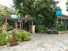 La・fonte  Restaurant. organic Italian fresh ingredients. Naha Okinawa. 11:30-15:00pm 18:00-23:00 (L.O22:00). Address: 1 Chome-13 Shuritobarucho, Naha.   Google Maps Coordinates: 26.2233265, 127.71598100000006