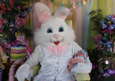 Photos with the Easter Bunny Funny Easter Bunny, Easter Bunny Pictures, Bunny Party, Easter Party, Happy Easter Messages, Picture Backdrops, Easter Colors, Vintage Easter
