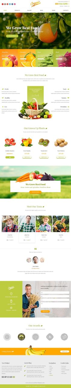 Organic is a bright and eye catching design for agriculture topic. This PSD theme can be used for small #farm #website, organic food store or market.