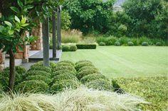 franchesca watson / graphic garden, constantia cape town Pinned to Garden Design by Darin Bradbury.
