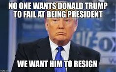 Image result for donald trump memes