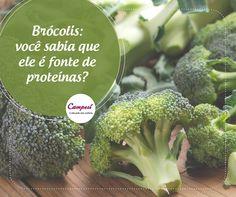 Se você também está cuidando da sua alimentação para levar uma vida mais saudável, não deixe de incluir brócolis nos seus pratos. Além de muitas vitaminas ele ainda tem proteína, sabia? #dicaCampesí