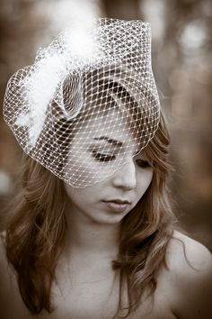 Love bird cage veil.