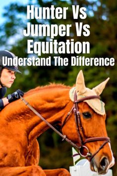 Read blog post to find out the differences between Hunters, Jumpers and Equitation Jumping. Learn the differences between classes, turnout, what judges look for and more. #hunterjumper #huntervsjumper #showjumping #equitation #horsebackriding #englishriding discipline Hunter Horse, Show Jumping Horses, Baby Horses, English Riding, Horse Training, Judges, Horse Farms, Horse Photography, Horseback Riding